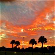 Backyard Art - Central Winds Park Sunrise
