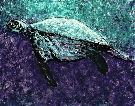 Mottled Sea Turtle 200 dpi for Instagram 001